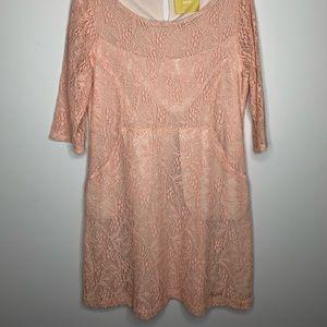 Anthropologie: Scoop Neck Blush Lace Dress